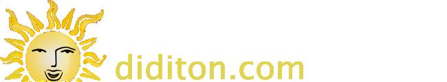 diditon.com